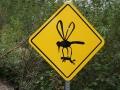 Alaskan Mosquito Warning Sign DSC09138