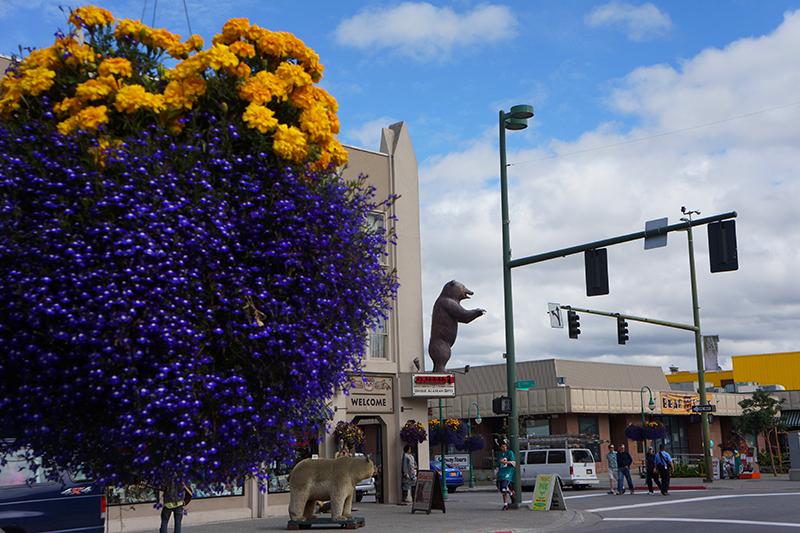 Downtown Anchorage DSC08258