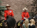 Mounted Police At Calgary Stampede