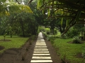 Walkway thru Gardens - zcosta ricaIMG_6152