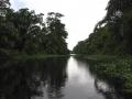 Tortuguero Canal - zcosta ricaIMG_6197