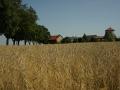Wittenberg DSC03783