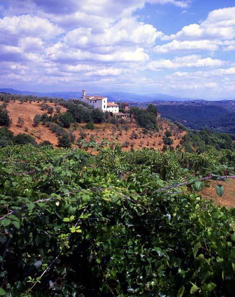 TuscanCountrySide
