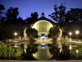 Botanical Garden at Night in Balboa Park San Diego