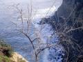 LaJolla Cliffs