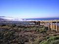 Torrey Pines Beach, Bridge and Coaster