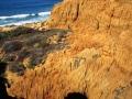 Torrey Pines Cliffs