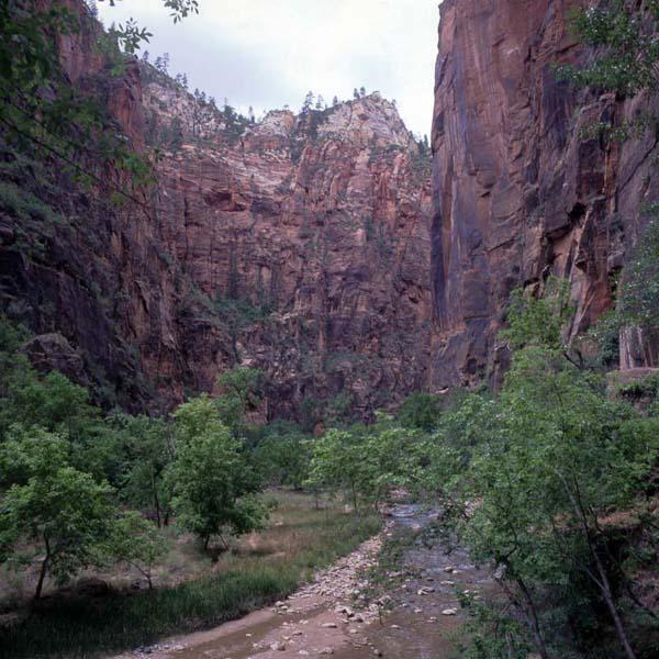 Zion Park03