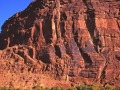 Colorado River Near Moab 1