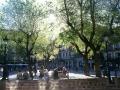Toledo Town Plaza